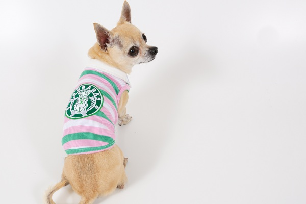 Dogbarks Multi Stripe Pink Tank - Click Image to Close